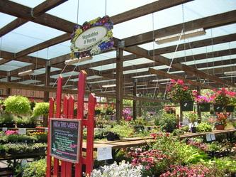 als garden center - Als Garden Center
